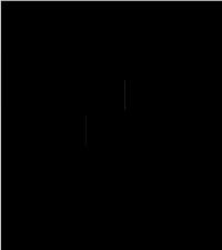 Kuva tuotteen Liikuntarata VE2 turva-alueesta